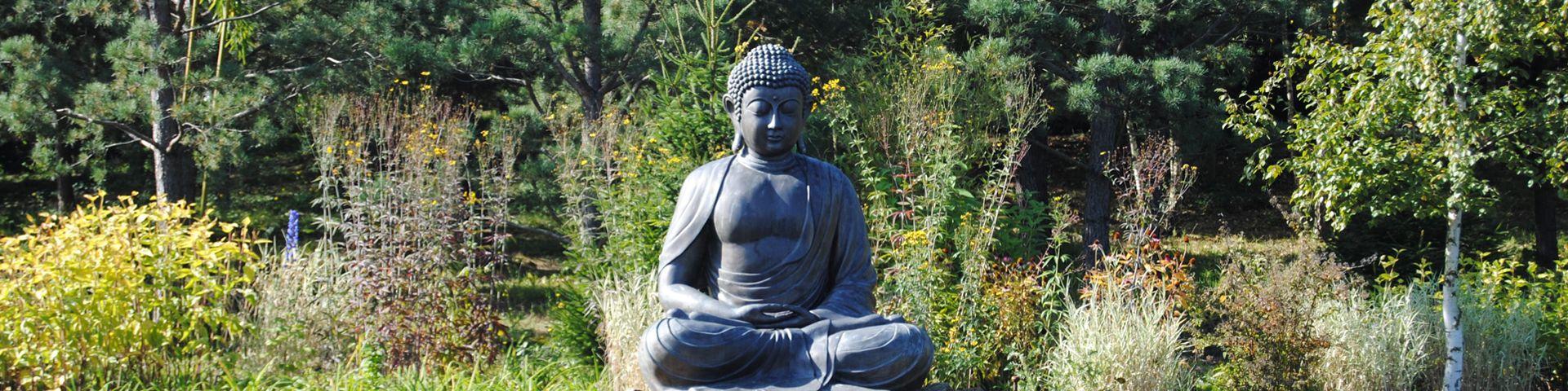 Maria Medita, En chemin vers le meilleur de soi